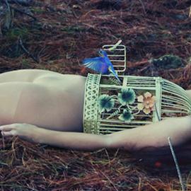 Dara Scully in Wonderland